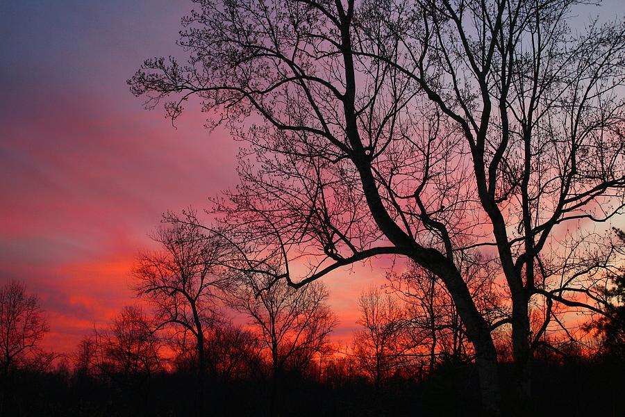 Sunrise Photograph - Morning Has Broken by Kathryn Meyer