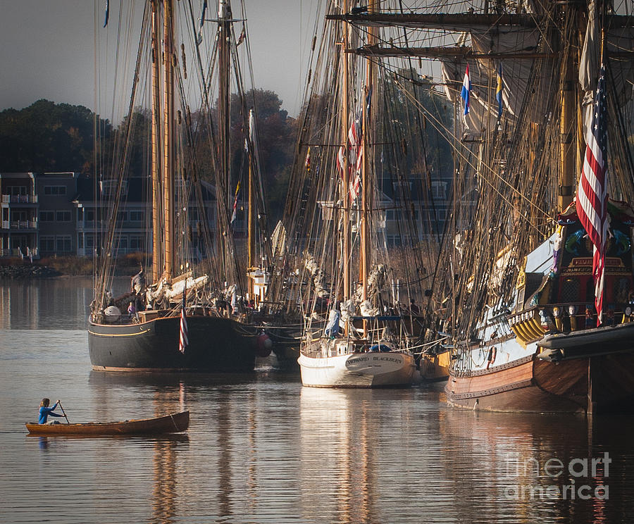 2013 Photograph - Morning Light - Chestertown Downrigging Weekend by Lauren Brice