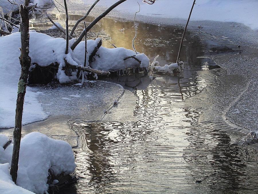 Palenville Photograph - Morning Light Draws A Mist From The Frigid Stream by Terrance DePietro