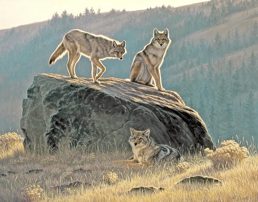 Wildlife Painting - Morning Lookouts by Paul Krapf