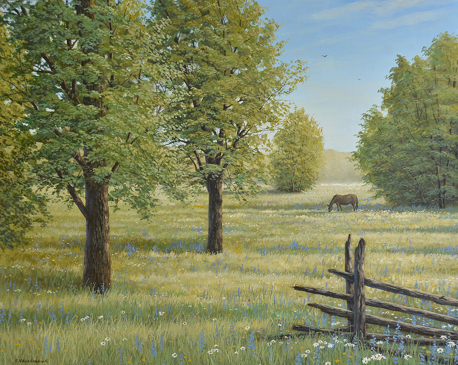 Canadian Painting - Morning Meadow by Jake Vandenbrink