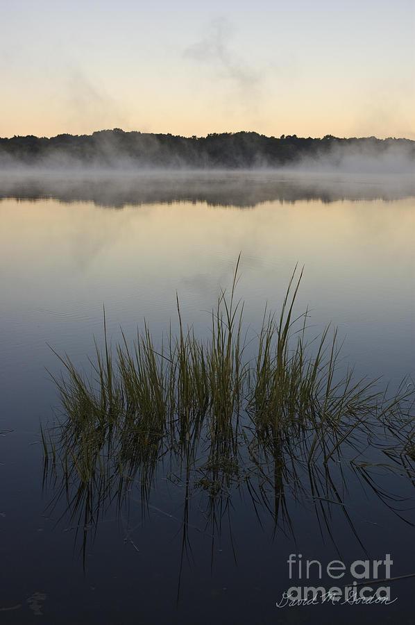 Morning Photograph - Morning Mist At Sunrise by David Gordon
