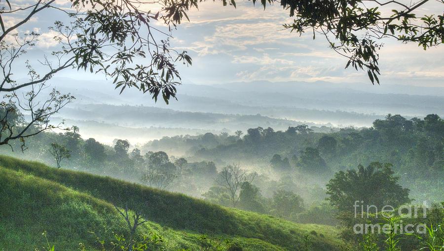 Heiko Photograph - Morning Mist by Heiko Koehrer-Wagner