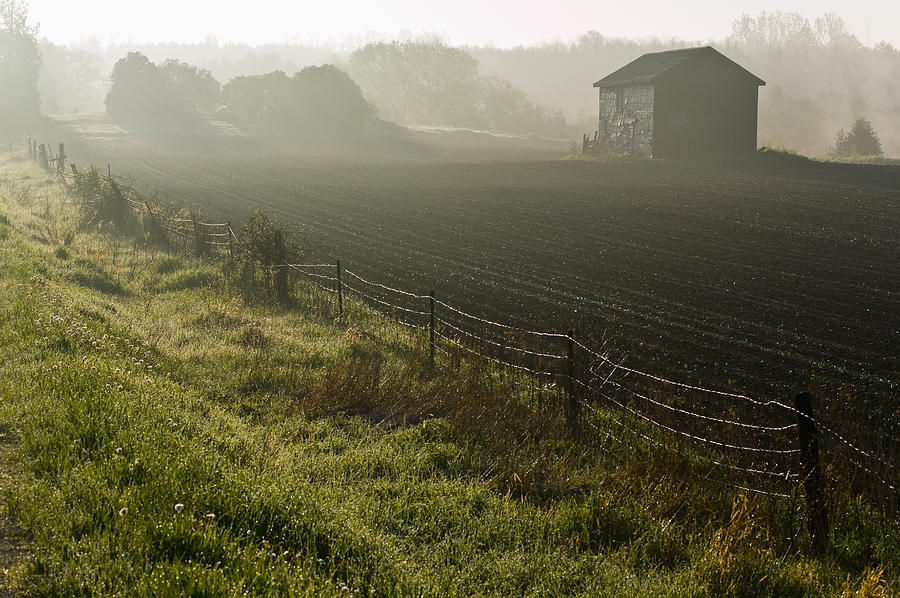Shed Photograph - Morning Mist Over Field And by Jim Craigmyle