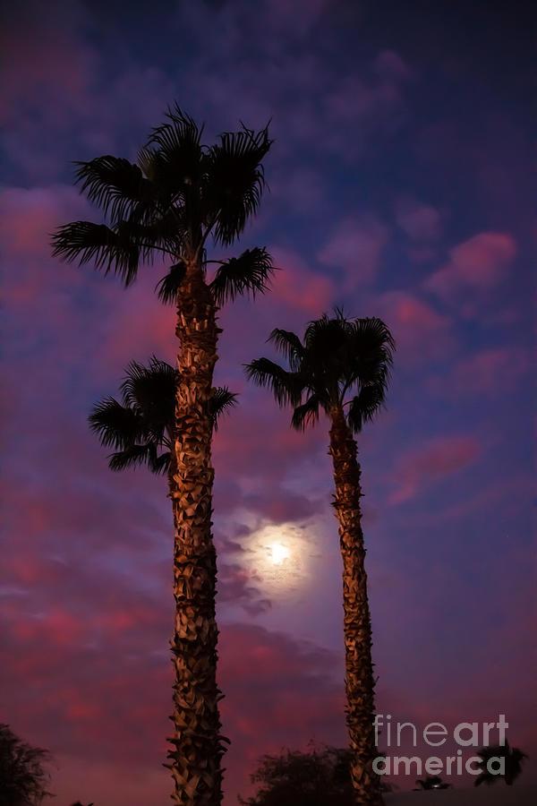 Sunrise Photograph - Morning Moon by Robert Bales