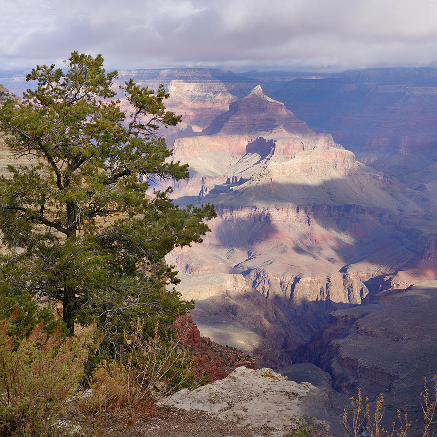 Grand Canyon Photograph - Soft Sunrise Over Isis by Lisa  Spencer