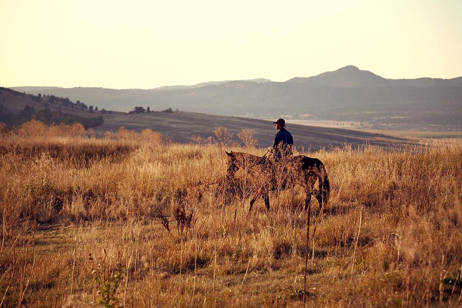 Horse Photograph - Morning Ride by Deborah Johnson