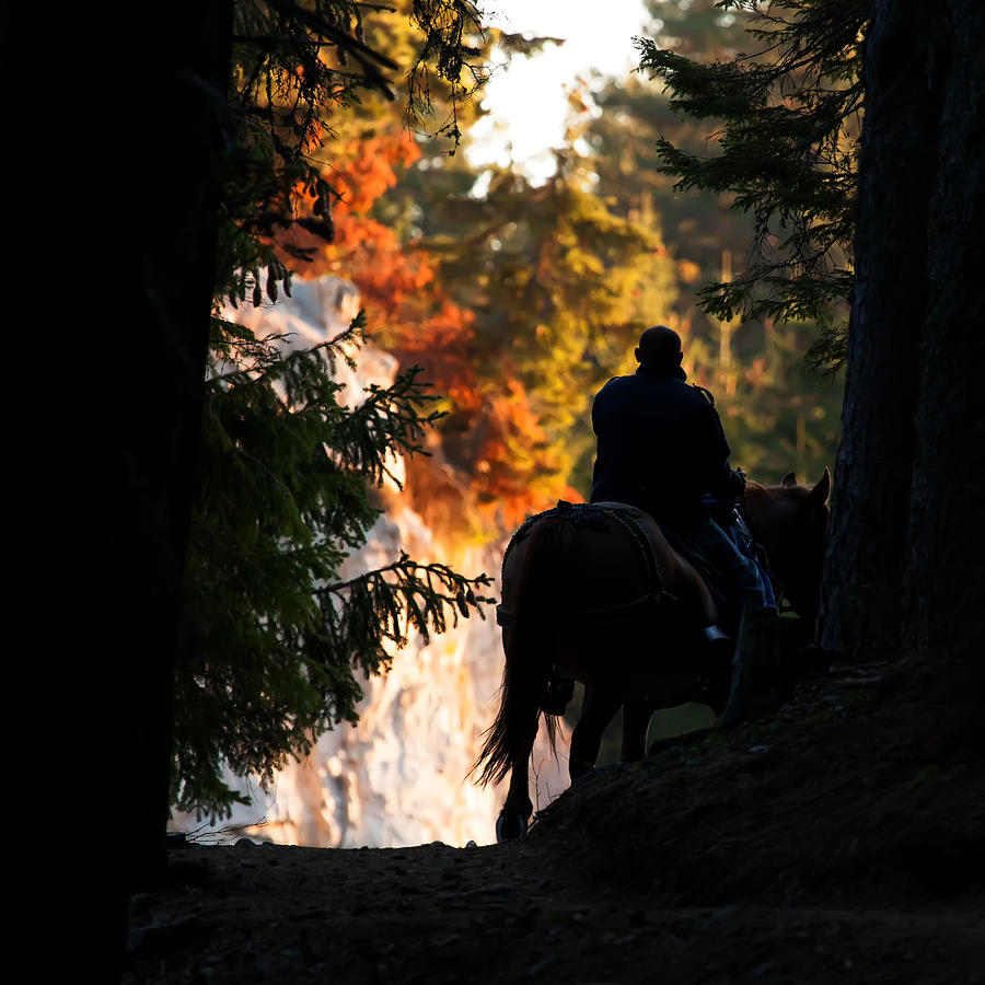 Sunrise Photograph - Morning Ride  by Svetoslav Sokolov