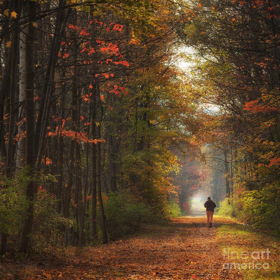 Michele Photograph - Morning Run by Michele Steffey