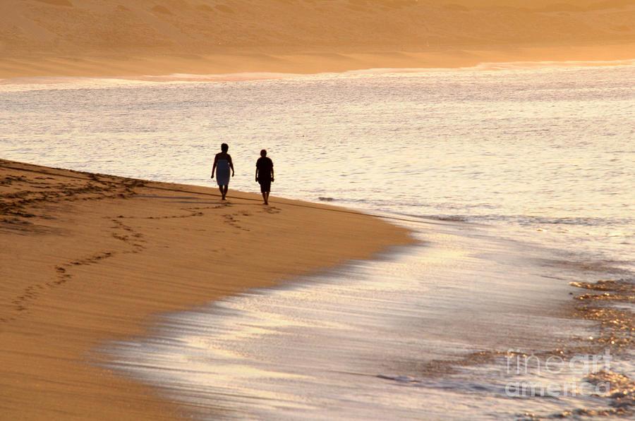 Summer Photograph - Morning Stroll by Dan Holm
