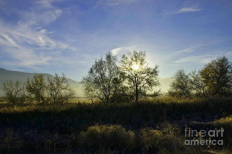 Sunset Photograph - Morning Sun  by Nicole Markmann Nelson