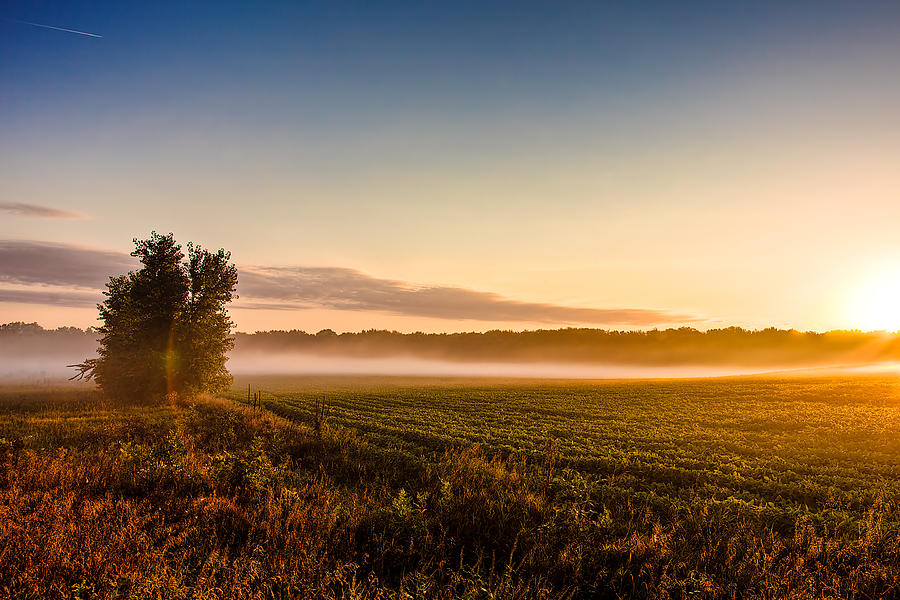 Morning Sun Over Farmland Photograph by David Wynia