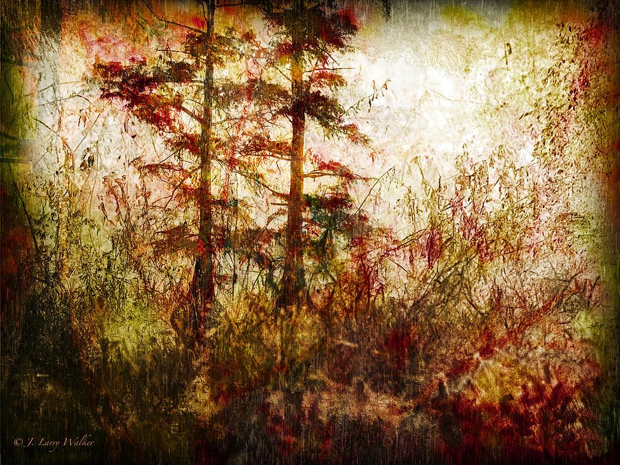 Walker Photograph - Morning Sunrise Burst Of Color by J Larry Walker