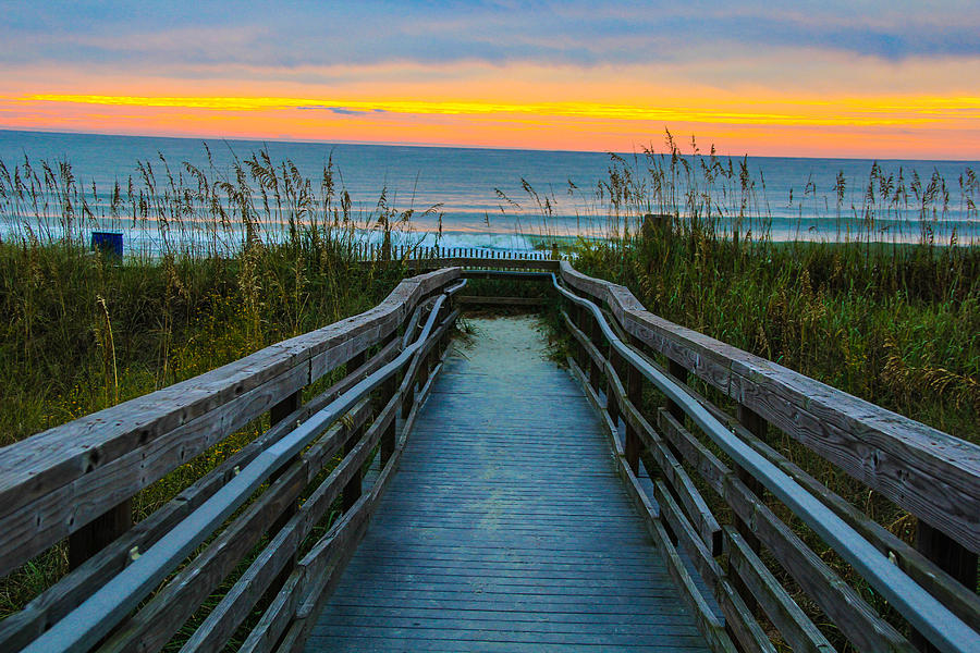 Morning Walk Photograph by Donald Hovis Jr