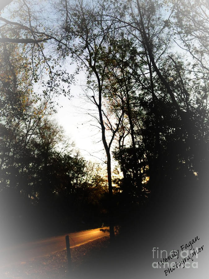 Road Way With Trees Photograph - Morning Walk by Jeffery Fagan
