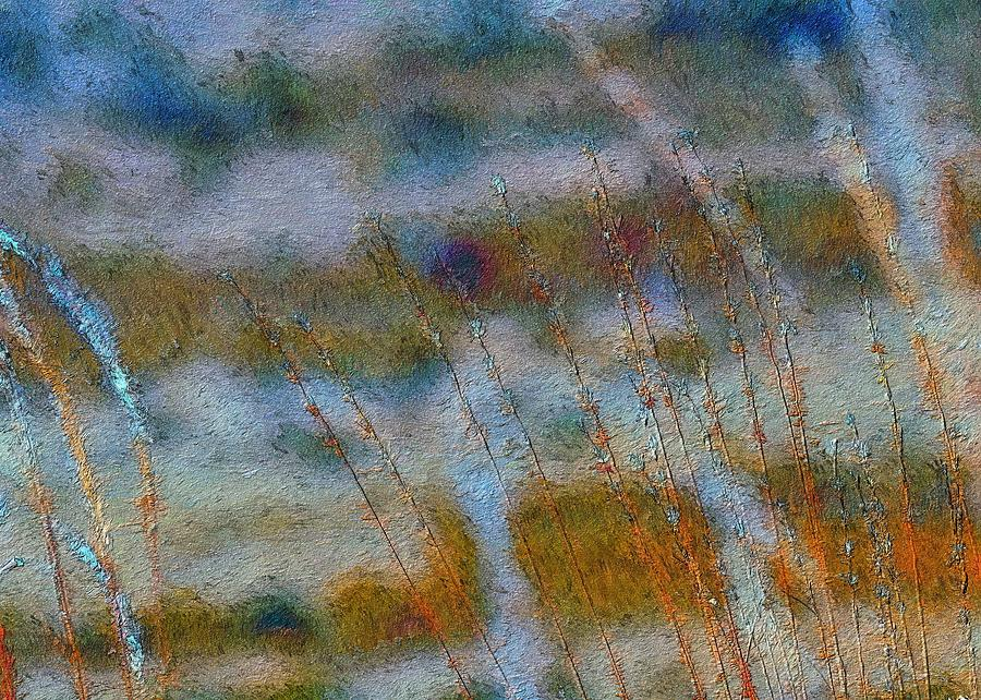 Mornings Grass Photograph