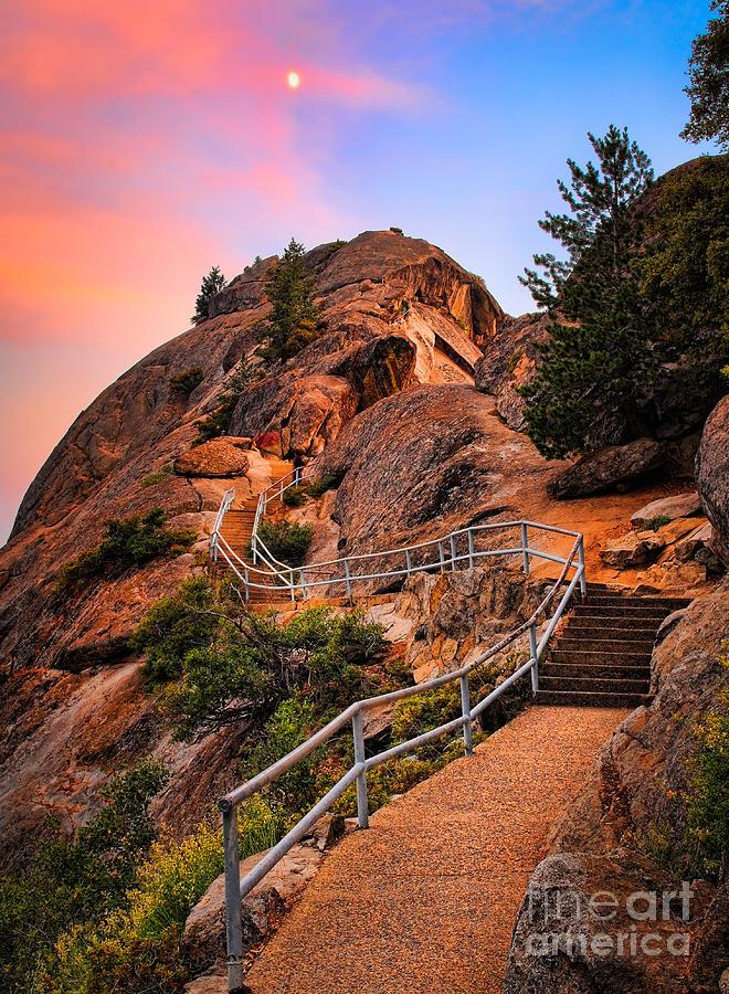 America Photograph - Moro Rock Path by Inge Johnsson
