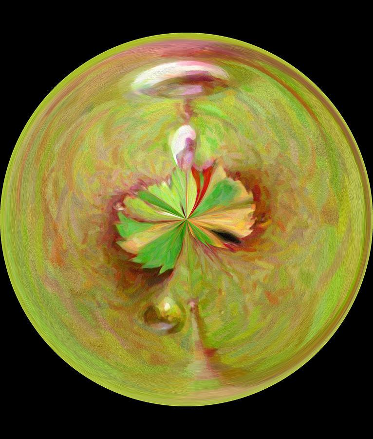 Decoration Photograph - Morphed Art Globe 21 by Rhonda Barrett