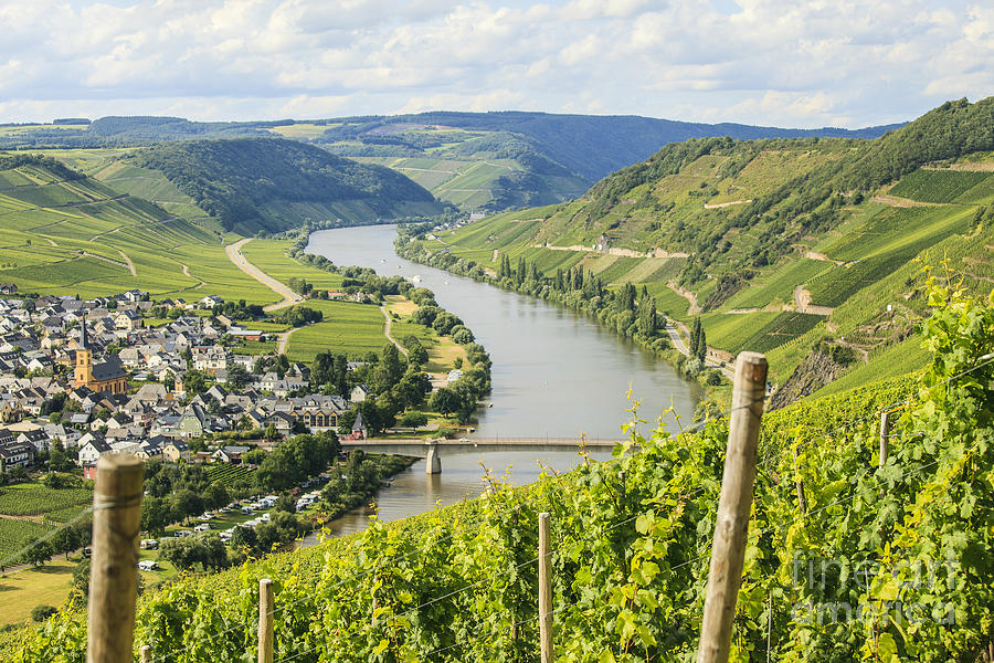 Beauty Photograph - Mosel Area by Patricia Hofmeester
