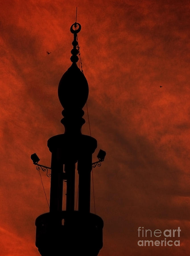 Dome Photograph - Mosque by Mohamed Elkhamisy
