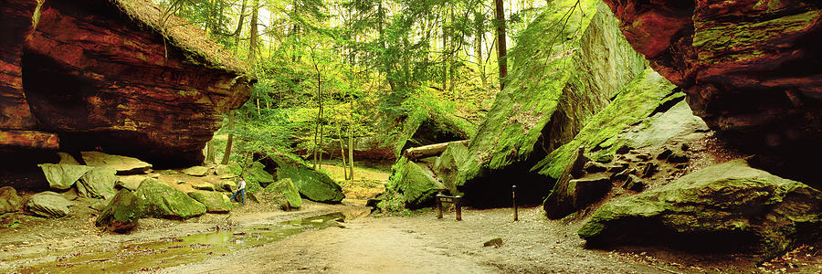 Horizontal Photograph - Moss Covered Rocks In Forest, Rocky by Panoramic Images