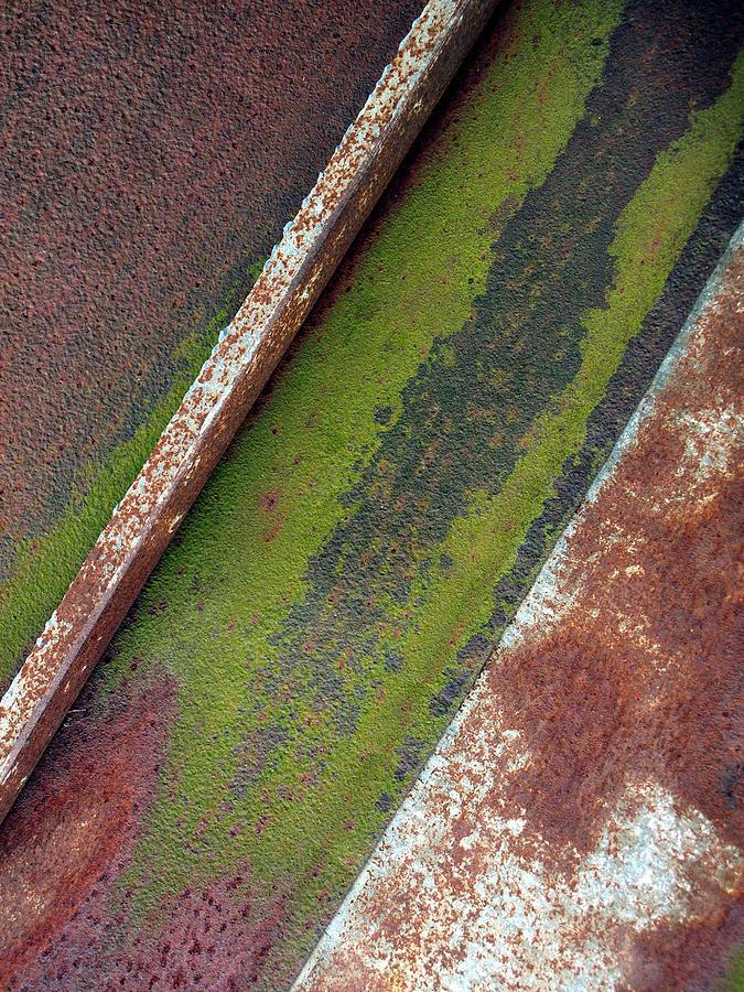 Raw Steel Photograph Photograph - Moss Green-raw Steel by Tom Druin