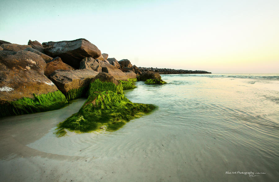 Beach Photograph - Mossy Lagoon by Volker blu Firnkes