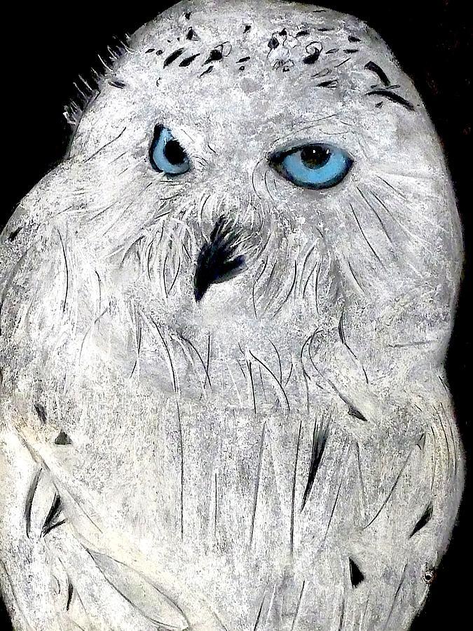 Owl Boy Pastel - Snow Owl by Tyler Schmeling