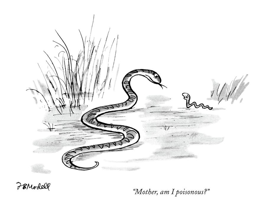 Mother, Am I Poisonous? Drawing by Frank Modell