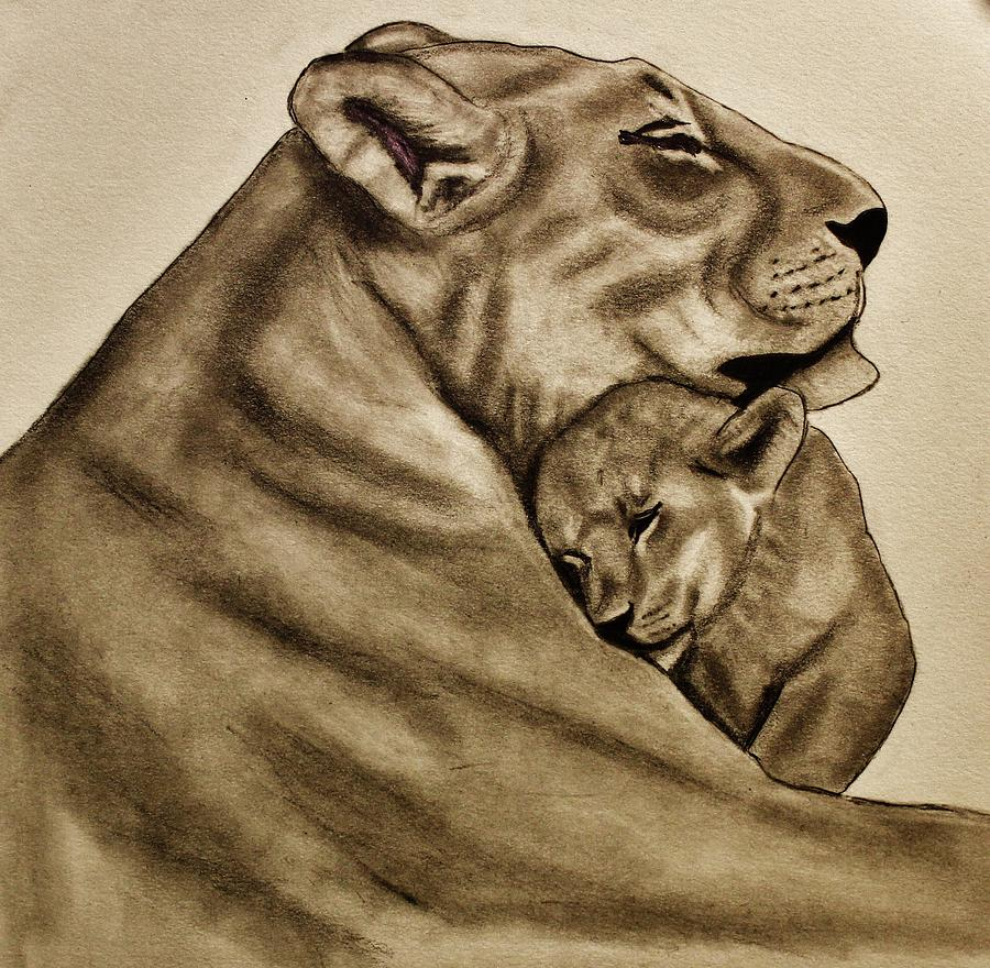 Lion Drawing - Mother And Son by Michael Cross