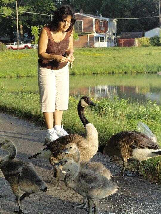 Woman Photograph - Mother Goose by Guy Ricketts