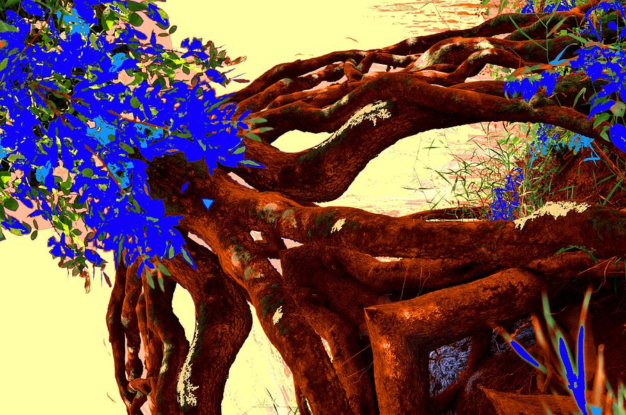 Mother Nature by Laureen Murtha Menzl