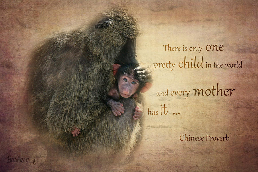 Monkey Photograph - Mothers Love by Barbara Orenya