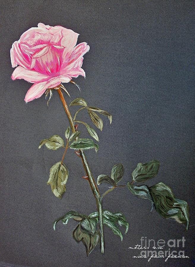 Rose Photograph - Mothers Rose by Nina Ficur Feenan