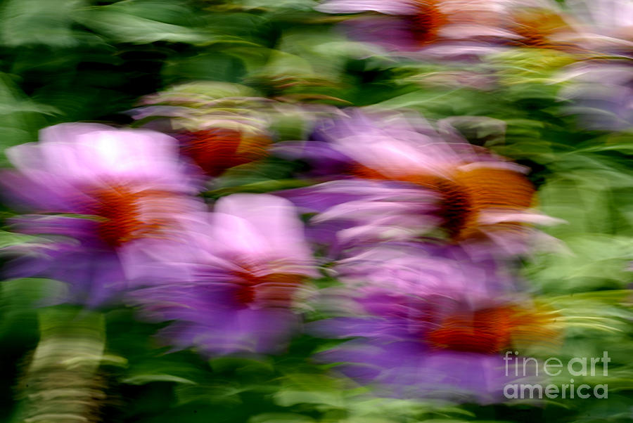 Nature Photograph - Motion Series - 234 by Paul W Faust -  Impressions of Light
