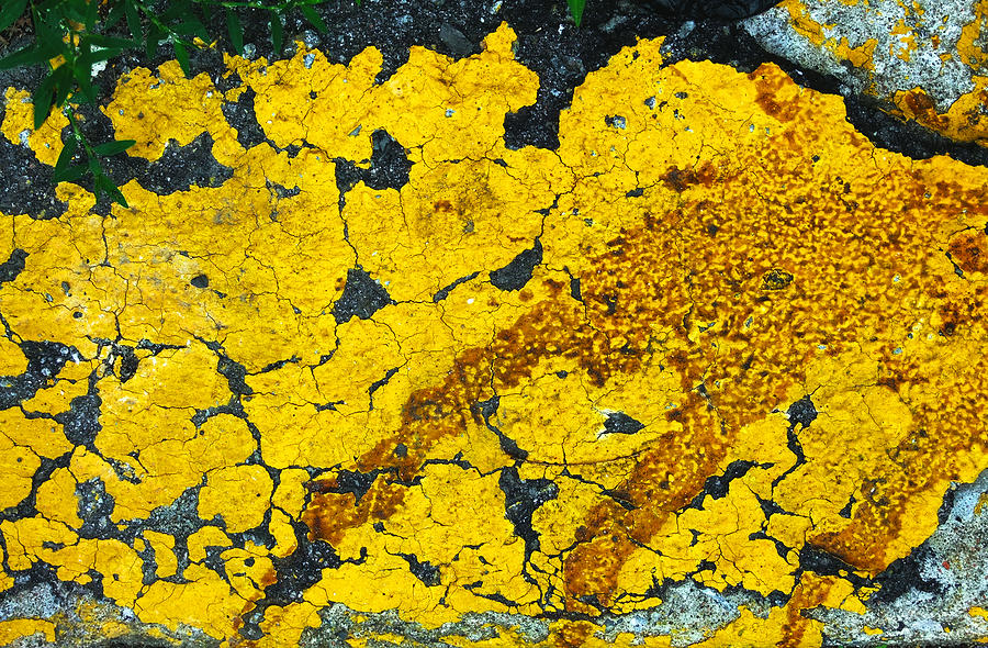 Asphalt Photograph - Motor Oil On Yellow by Robert Knight