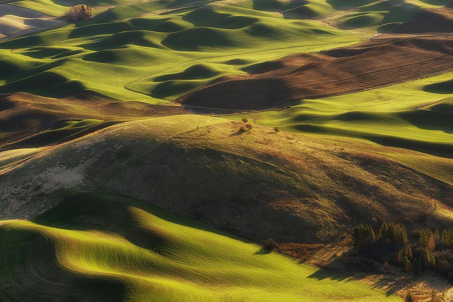 Palouse Photograph - Mounds Of Joy by Ryan Manuel