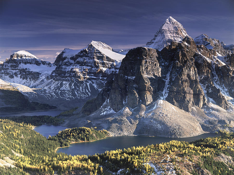 Assiniboine Photograph - Mount Assiniboine in the fall by Richard Berry