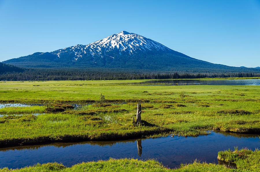 Mountain Photograph - Mount Bachelor And Meadow by Jess Kraft