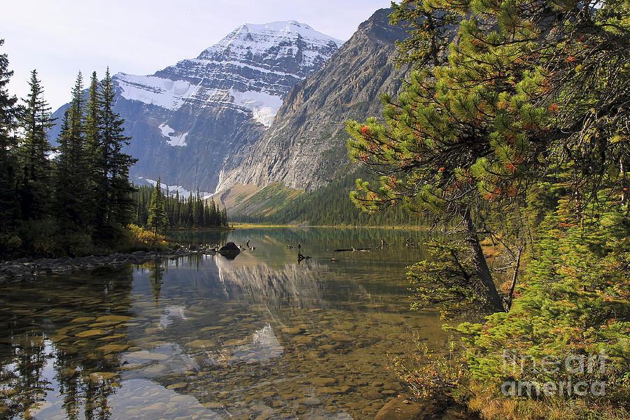 Mount Edith Cavell Reflection Photograph by Teresa Zieba