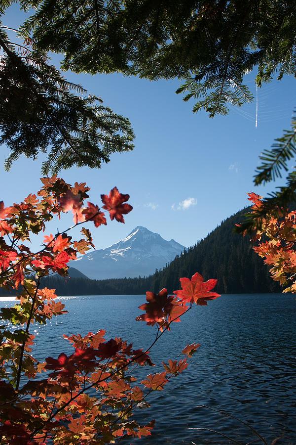 Mount Hood Photograph - Mount Hood In Autumn by W Chris Fooshee