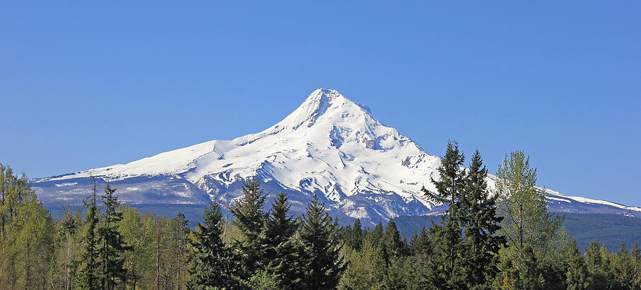 Mount Hood Photograph - Mount Hood Mountain Oregon by Jennie Marie Schell