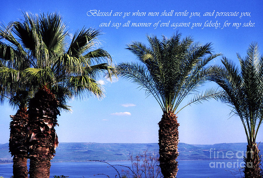 Sea Of Galilee Photograph - Mount Of The Beatitudes by Thomas R Fletcher