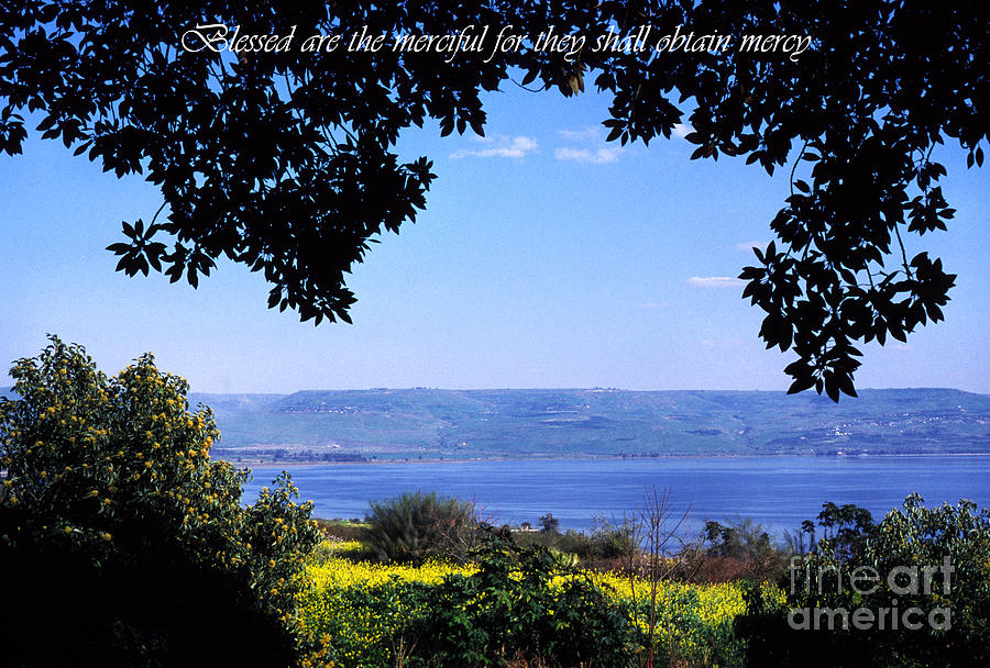 Sea Of Galilee Photograph - Mount Of The Beattitudes by Thomas R Fletcher