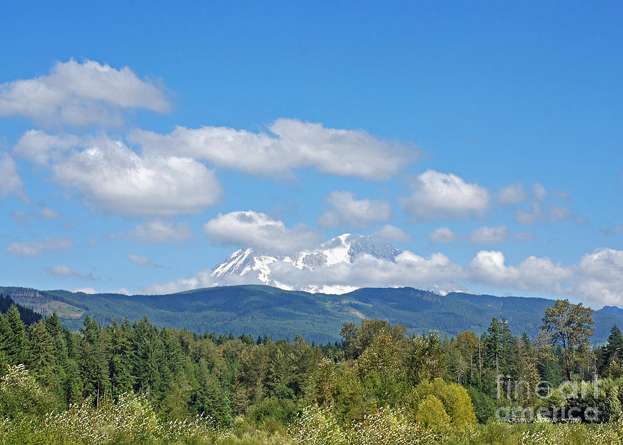 Mount Rainier Photograph - Mount Rainier As Viewed From The West by Connie Fox