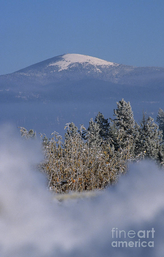 Spokane Photograph - Mount Spokane by Sharon Elliott