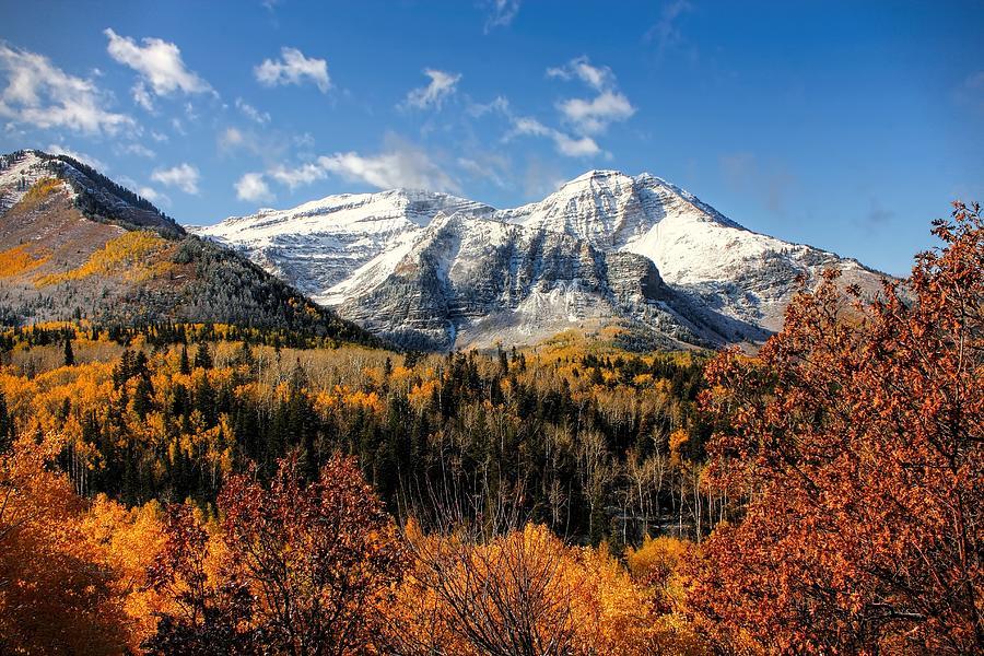 Timpanogos Photograph - Mount Timpanogos in Autumn Utah Mountains by Tracie Kaska