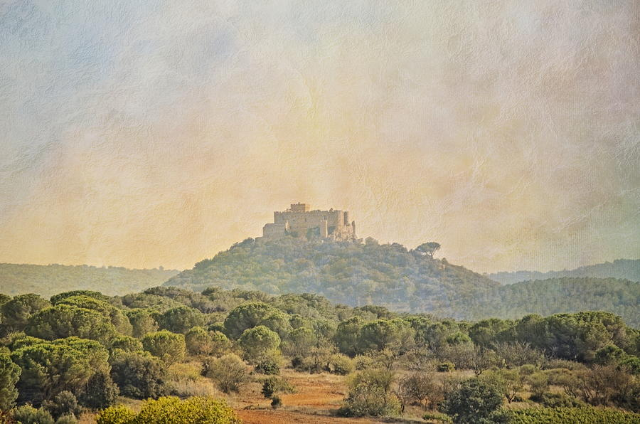 Pyrenees Photograph - Mountain Chateau by Linda C Johnson