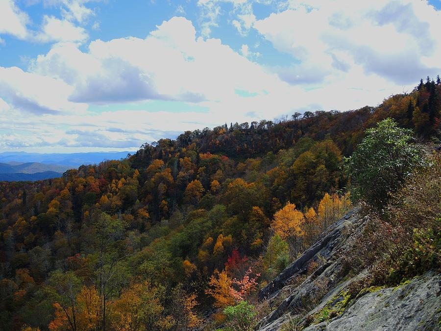 Autumn Photograph - Mountain Colors by Judy  Waller