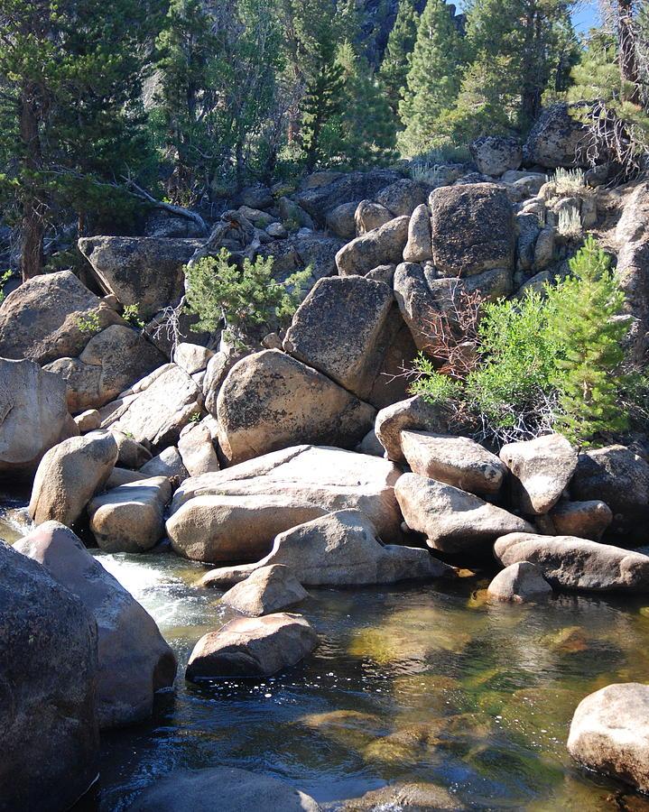 Mountain Creek Pool Photograph by Vicki Coover